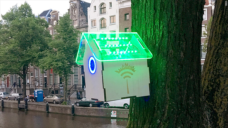 wifi nest box in Amsterdam